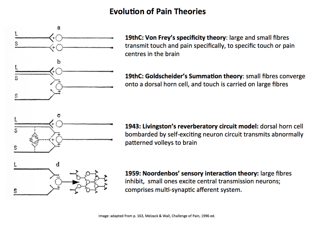 gate control theory specificity pain
