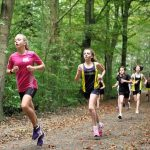 Which Has Less Risk of Knee Osteoarthritis: Recreational or Competitive Running?