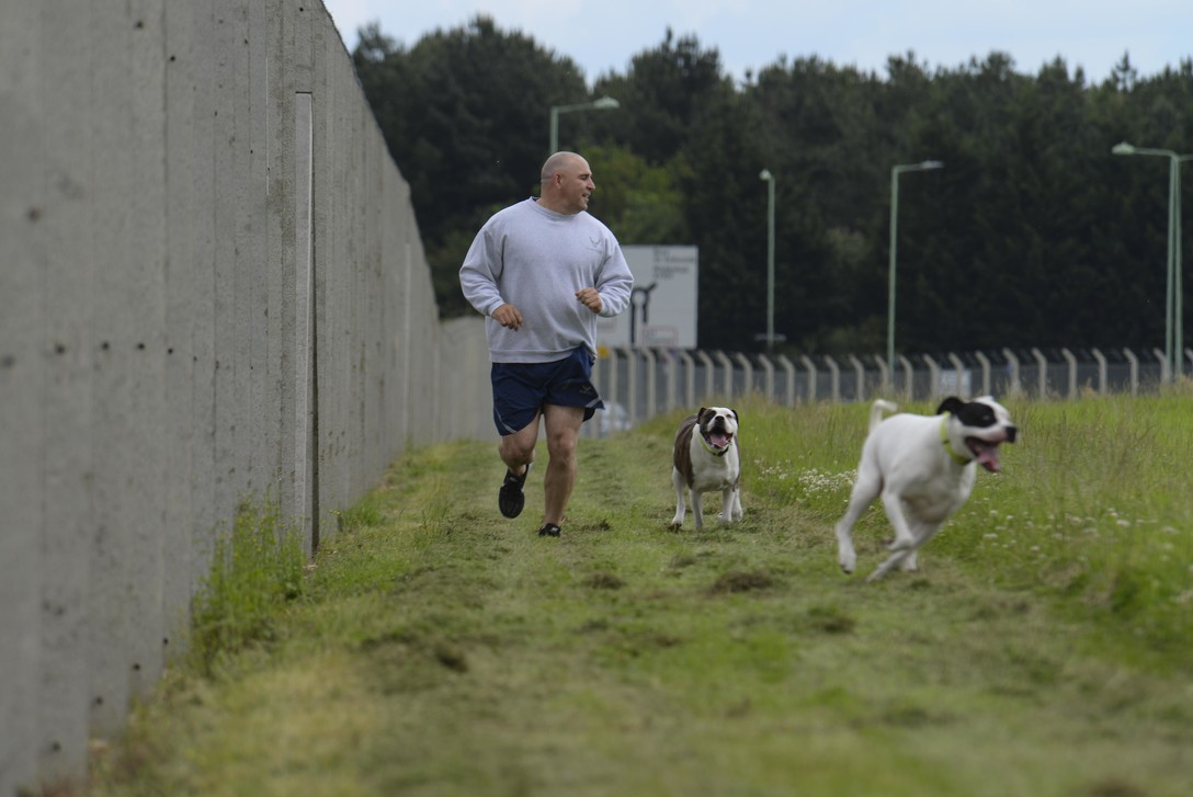 man running dogs exercise